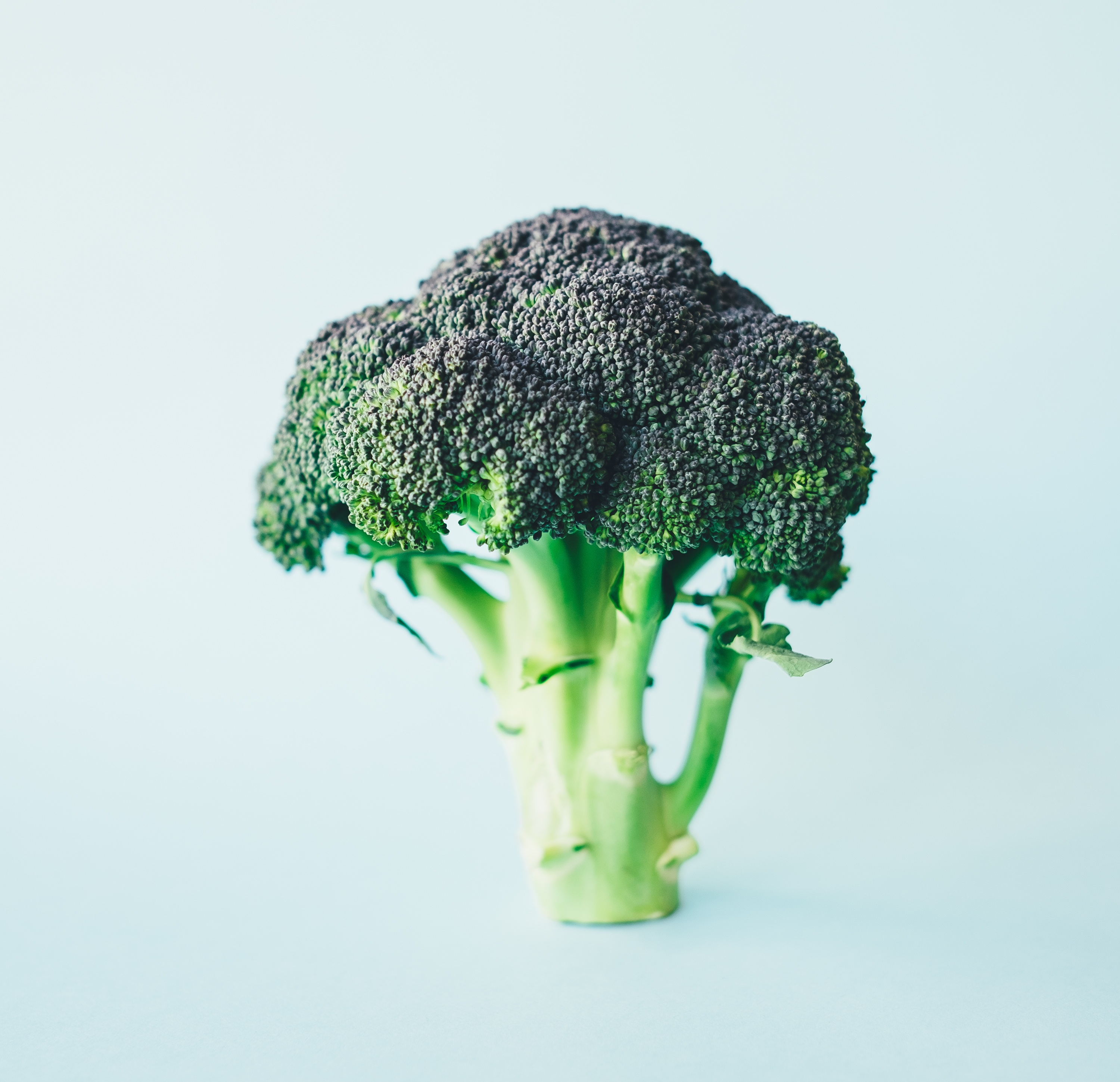 Broccoli for patients with type 2 diabetes